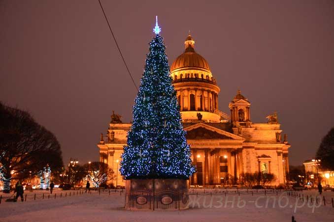 Новогодняя ёлка с видом на Исаакиевский собор