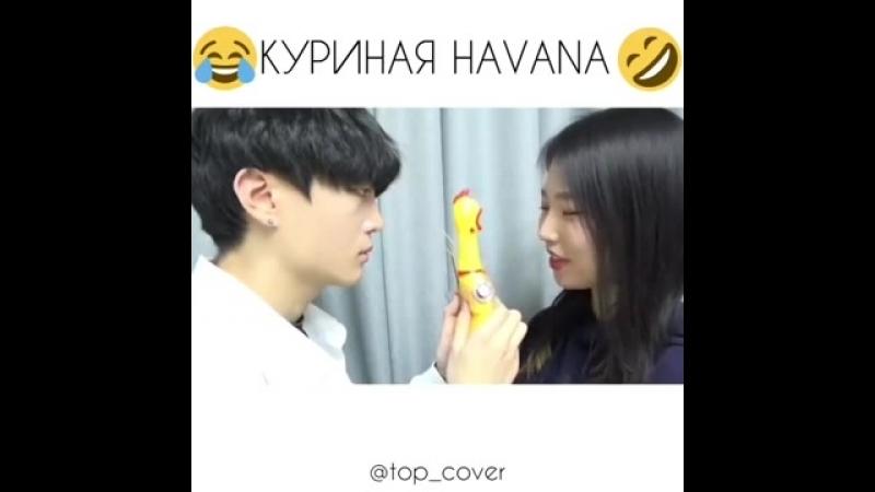 КУРИНАЯ HAVANA 😆😂😃😀 - CAMILA CABELLO - HAVANA chicken cover 🤣🤣🤣🤣.mp4