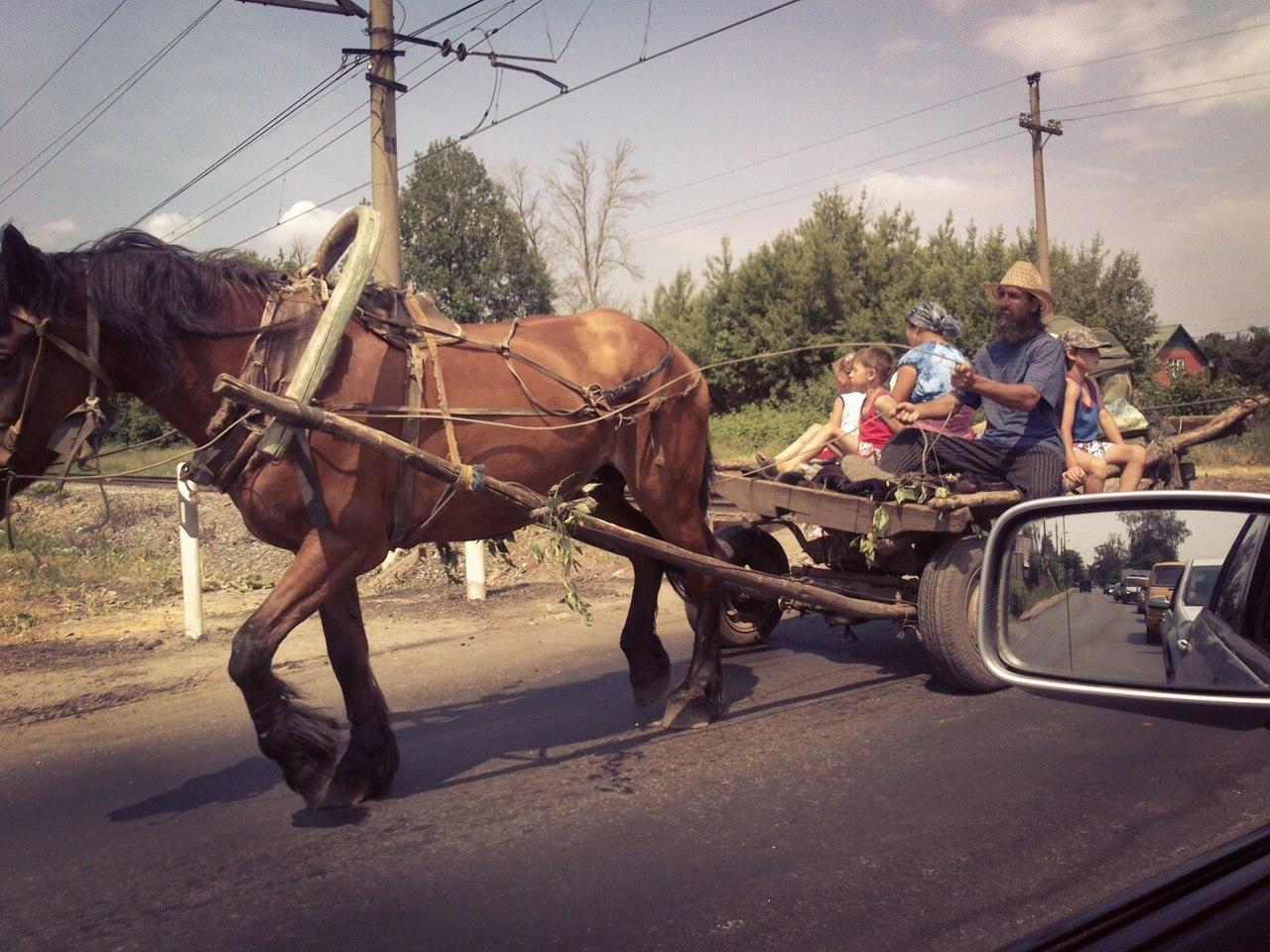 Тульской области минет 9 фотография