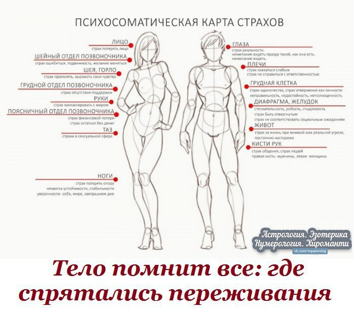 https://pp.userapi.com/c850632/v850632261/21f46/9Jl_kwx2vMk.jpg