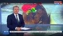 Новости на Россия 24 • В Карелии поисковики нашли останки погибших во время Великой Отечественной войны