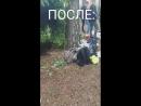 VID_32650219_194231_907.mp4