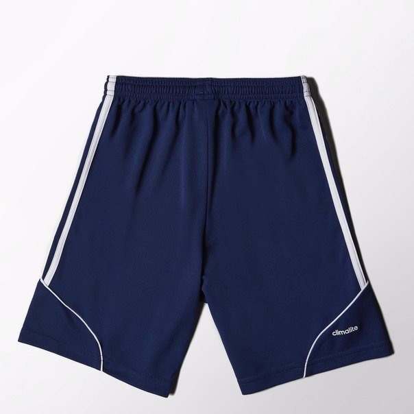 Спортивные шорты (трикотаж) SQUAD 13 SHO Y