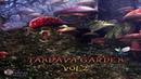 Distant Galaxy - Tandava Garden Vol.2 [Mixed Album] ᴴᴰ