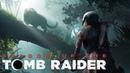 Прохождение Shadow of the Tomb Raider. Часть 3. Амазонка . Босс: Ягуар.