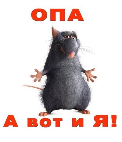 Верчик Васильева, 16 июня 1985, Боровичи, id34765697