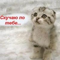 Юля Солнцева, 8 июля 1995, Кострома, id212921477