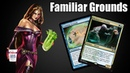 Sultai Familiar Grounds - (Modern) - RavnicaAllegiance | Brewing with Meryn