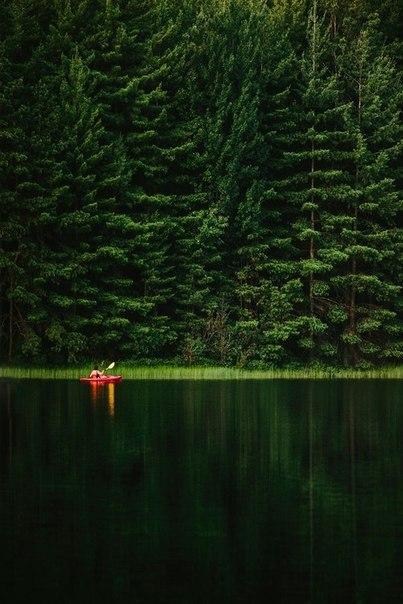 В группе  Фотография собраны работы лучших фотографов России и мира.