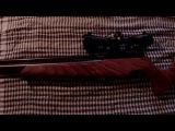 Пневматическая винтовка PCP EVANIX Blizzard S10 или Webley Venom Sidewinder