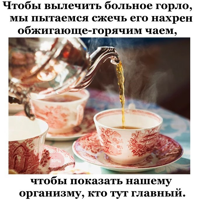 https://pp.userapi.com/c7003/v7003401/4ab39/XPVu_1gPgRw.jpg