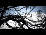 Killswitch Engage - Rose Of Sharyn OFFICIAL VIDEO