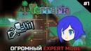 ХОЛОДНЫЙ СТАРТ - Огромный Expert Mode 1 - Terraria