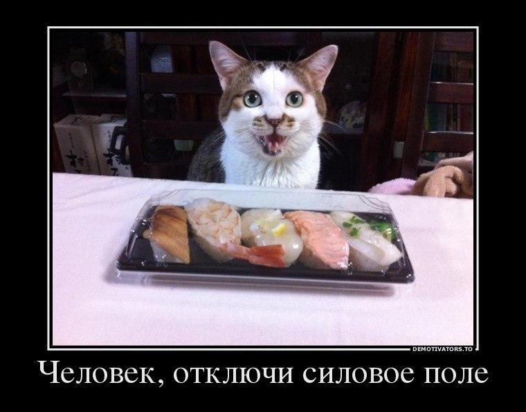 Актрисы российских сериалов женщины фото Язык