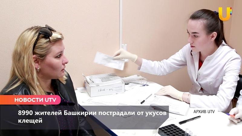 Новости UTV. Жители Башкирии страдают от укусов клещей