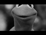 Suicide Kermit
