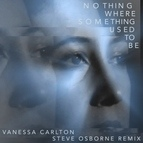 Vanessa Carlton альбом Nothing Where Something Used To Be