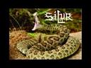 S I L U R Rattlesnake's Bite album promo