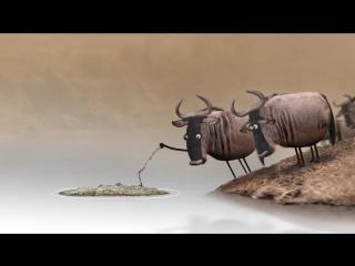 МУЛЬТ - Антилопа гну (смешной и глубоко ... то же са (720p).mp4