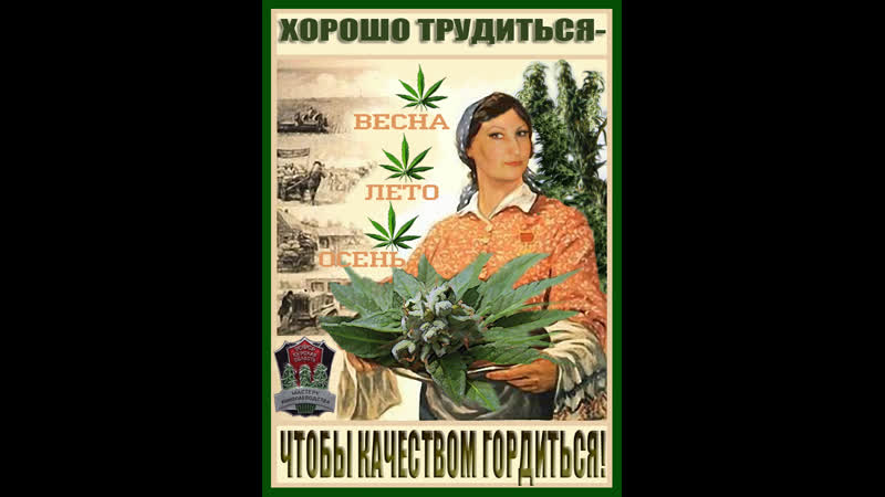 ☭ СССР ☭ Конопля.КОНОПЛЕВОДСТВА В СССР 1930-1950 годы