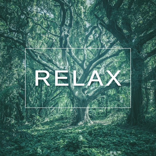 RELAX альбом Relax – Calm Music for Relax, Chill Out, Positive Energy