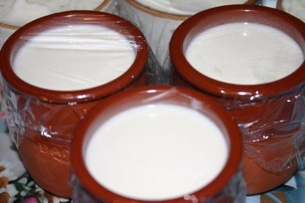 Йогурт домашний без йогурта