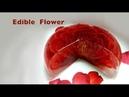Cách làm rau câu 3d đơn giản và dễ làm tại nhà |Beautiful Gracilaria,3D gracilaria jelly part 6