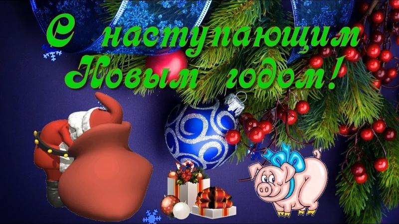 Видео открытка Забавное поздравление с наступающим 2019 годом Свиньи