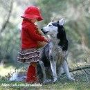 С каждым днём, проведённым рядом с собакой, ты понимаешь, что уже не сможешь без неё. Никогда.