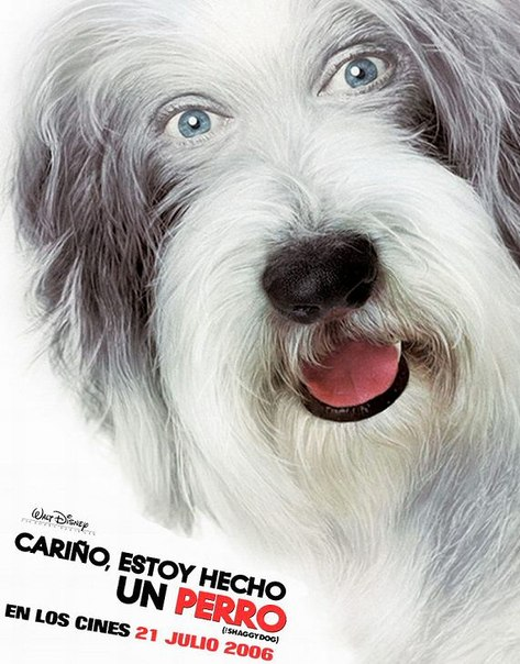 Ver The Shaggy Dog (2006) Online