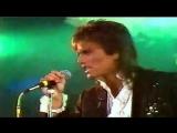 Latin Lover - Casanova Action