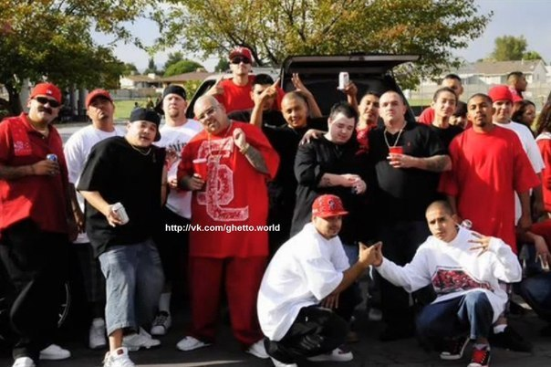 фото банды bloods