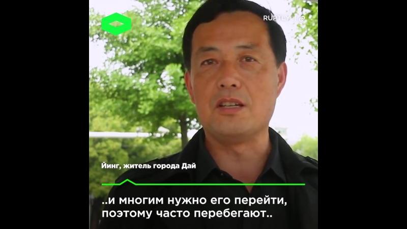 Умный светофор _ ROMB