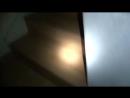 [КОТЫ ЮТУБЕРЫ] 5 МОНСТРОВ из ЗАБРОШЕК СНЯТЫХ НА КАМЕРУ [Черный кот]