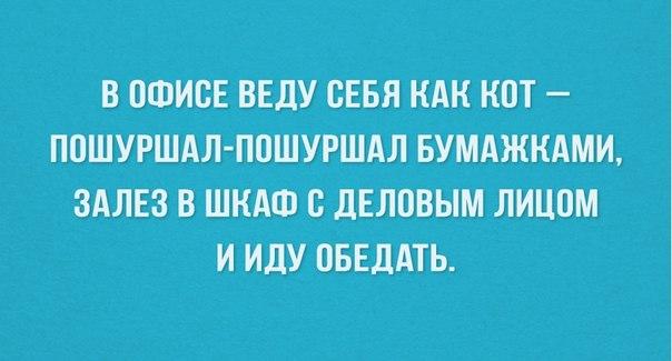 https://cs7059.vk.me/c7003/v7003416/67f7/uCGvx7jYW5k.jpg