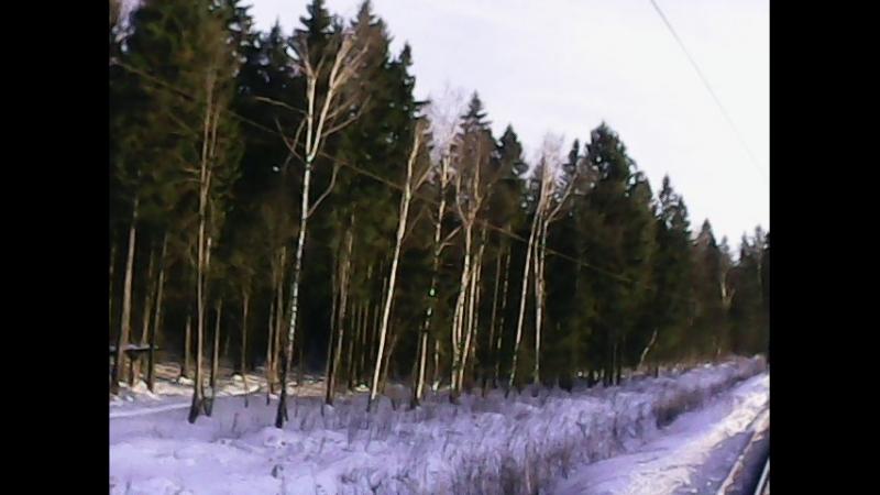 Рассудово-Бекасово-1 (Я, Андрей, Егор и Лёха)