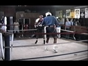 Mike Tyson Great - Sparring For Tony Tucker Fight July 22, 1987