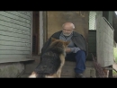Бандитский Петербург 6: Журналист (1 - 3 серия) 1080р 48 фпс