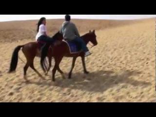 رحلة خاصة للعشاق لركوب الخيول في صحاري ستي بليل مع احلي خيمة بداوية