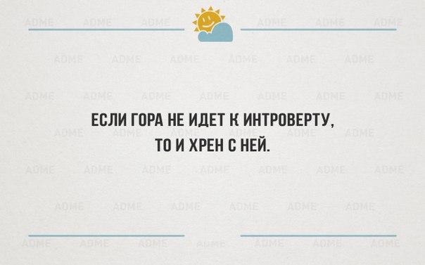 http://cs7059.vk.me/c540100/v540100585/35ef9/IFEqULQYotE.jpg