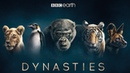 Dynasties First Look Trailer New David Attenborough Series BBC Earth