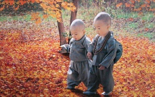 Основные правила тибетского воспитания - Самое важное — никаких унижений и телесных наказаний. Единственная причина, по которой бьют детей – они не могут дать сдачи.- Первый период: до 5 лет. С