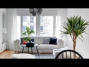 Decorating with Large Indoor Plants Instant Makeover 2018