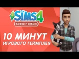 The Sims 4 «Кошки и собаки» | 10 минут игрового геймплея
