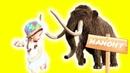 Парк доисторического Мира Для детей