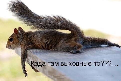 А то уже так хочется послушать радио Вельвет www.radio-velvet.ru