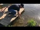 Фишка - рыбалка в подмосковье