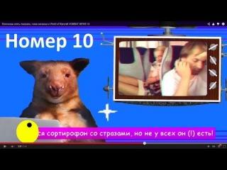Волочкова опять показала, голая китаянка и World of Warcraft VOMBAT NEWS 10
