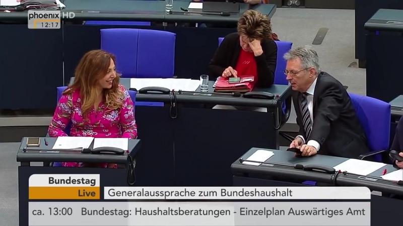 AfD will Bau der -Bundesbanane- verhindern -