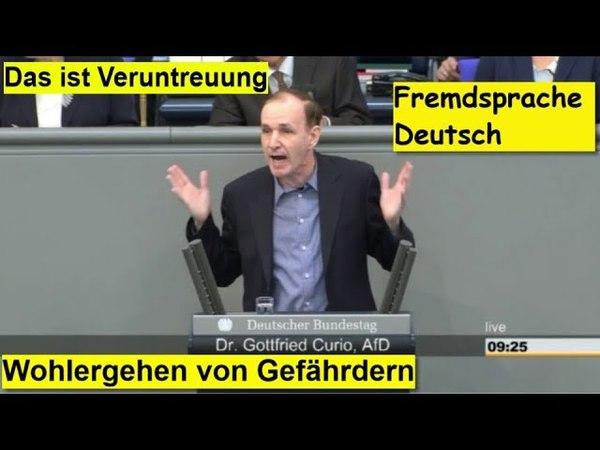 ► AfD - Dr. Gottfried Curio Die Groko hat ein Programm zur Terroristennachwuchsförderung